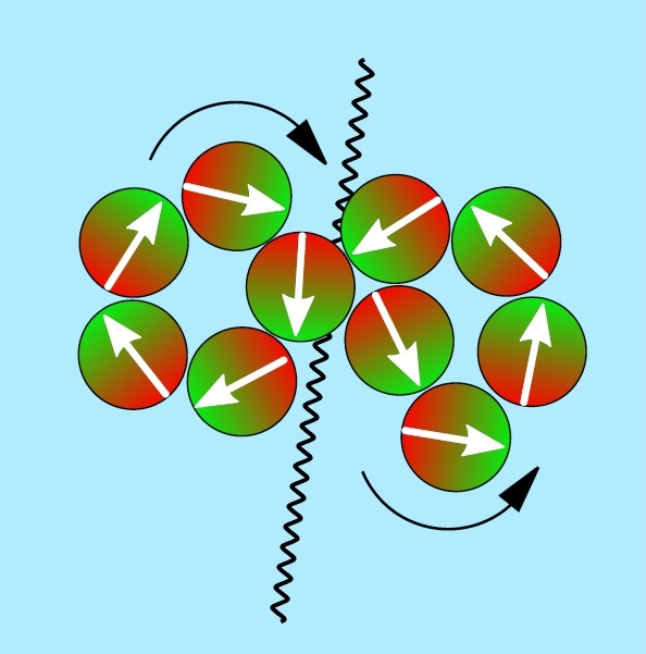 "Snapshot of a ""Waddling dance"" after the fusion of ten swimming micromagnets. (Image: Andreas Kaiser)"